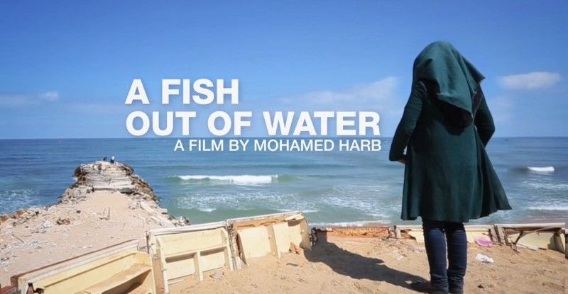 Image: A-Fish-Out-of-Water-Cover.jpg