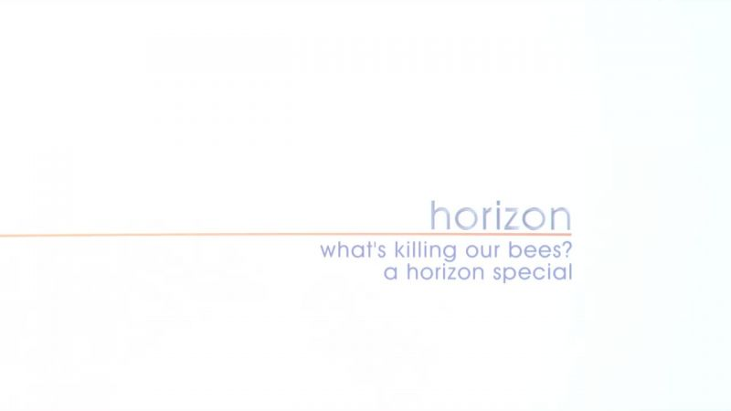 Image: What-s-Killing-Our-Bees-Cover.jpg