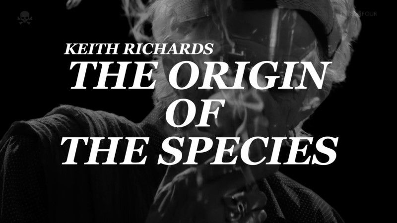 Image: Keith-Richards-The-Origin-of-the-Species-Director-s-Cut-Cover.jpg