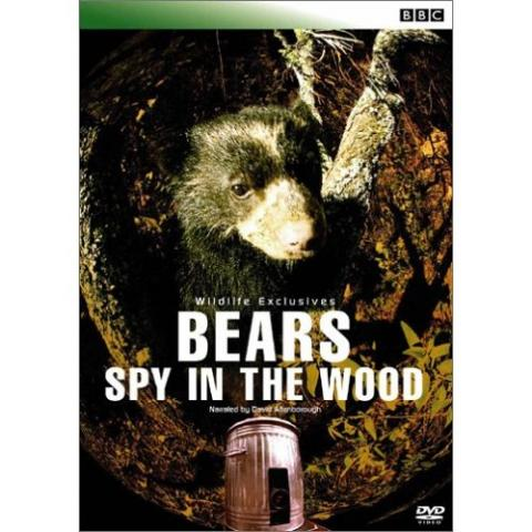 Image:Bears_-_Spy_in_the_Woods_Cover.jpg