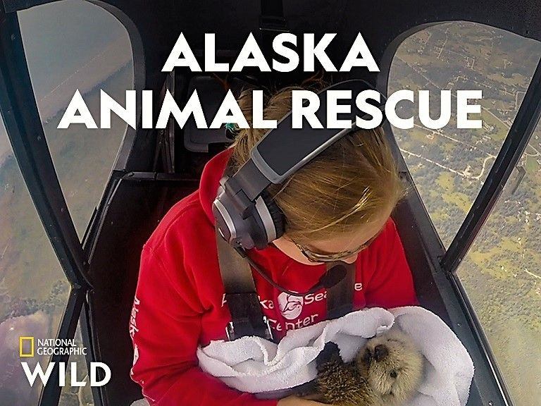 Image: Alaska-Animal-Rescue-Series-1-Cover.jpg
