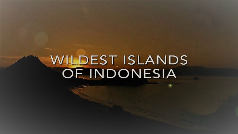 Image: Wildest-Islands-of-Indonesia-Series-1-Cover.jpg