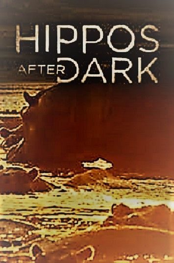 Image: Hippos-After-Dark-Cover.jpg