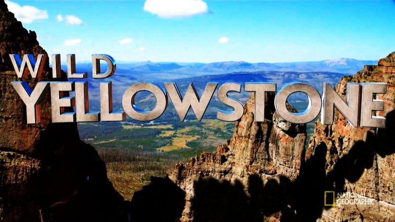 Image: Wild-Yellowstone-Series-1-Cover.jpg