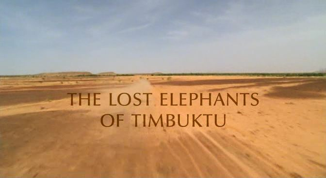 Image:Lost_Elephants_of_Timbuktu_Cover.jpg