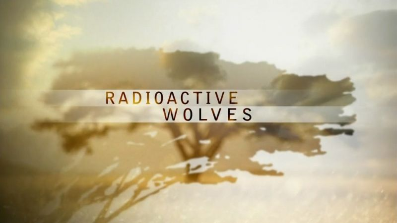 Image: Radioactive-Wolves-Cover.jpg