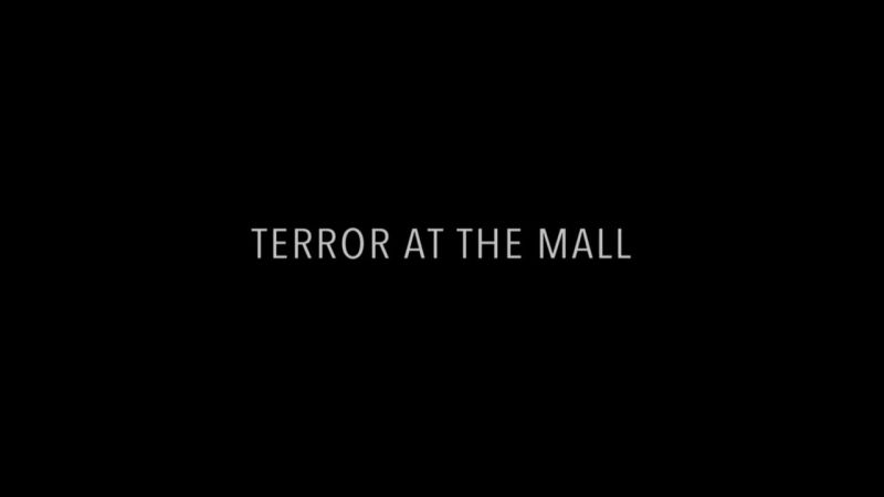 Image: Terror-at-the-Mall-Cover.jpg