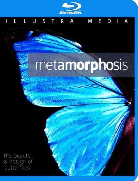 Image: Metamorphoisis.The.Beauty.and.Design.Of.Butterflies-Cover.jpg