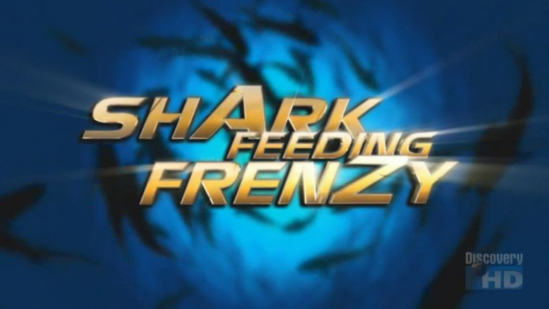 Image: Shark-Feeding-Frenzy-Cover.jpg