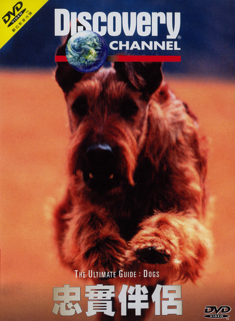 Image: Dogs-cover.jpg
