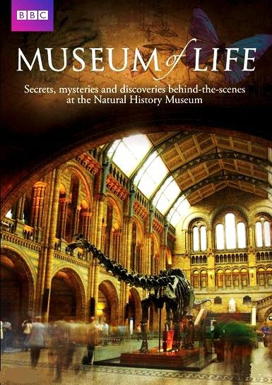 Image: Museum-of-Life-Cover.jpg
