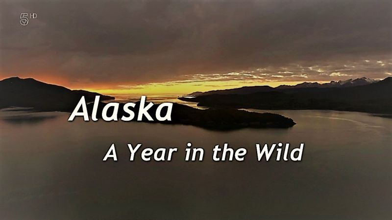Image: Alaska-A-Year-in-the-Wild-Series-1-Cover.jpg