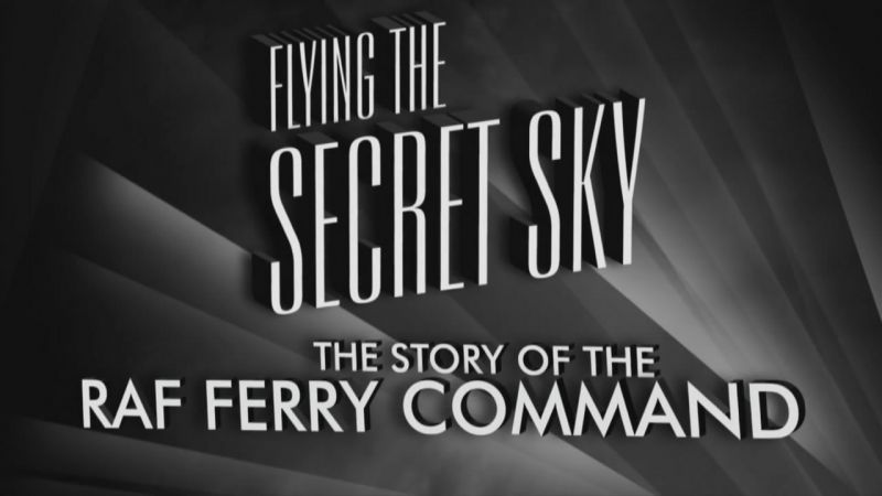 Image: Flying-the-Secret-Sky-Cover.jpg