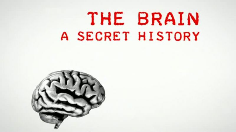 Image: The-Brain-A-Secret-History-Cover.jpg