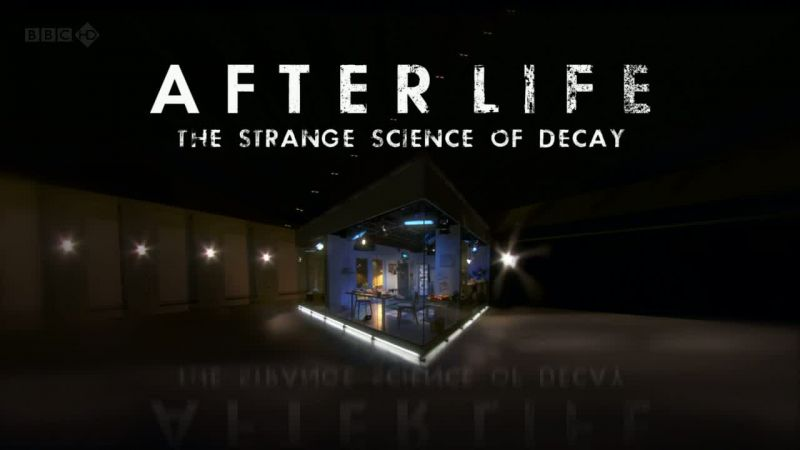 Image: After-Life-The-Strange-Science-of-Decay-Cover.jpg