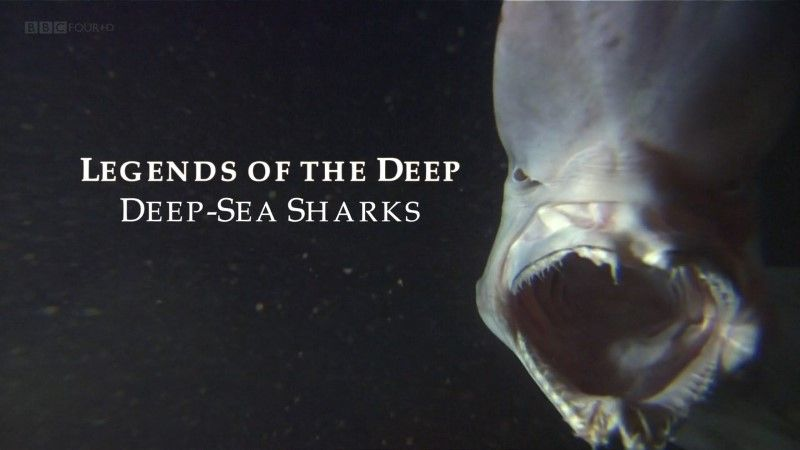 Image: Legends-of-the-Deep-Deep-Sea-Sharks-Cover.jpg