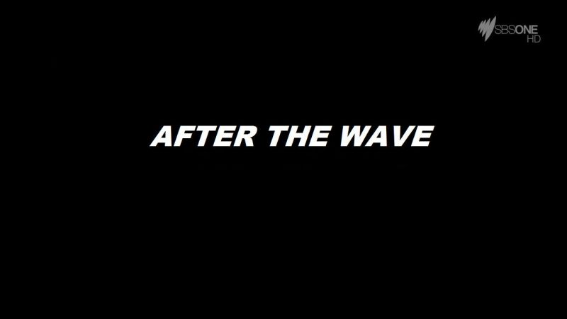 Image: After-the-Wave-Cover.jpg