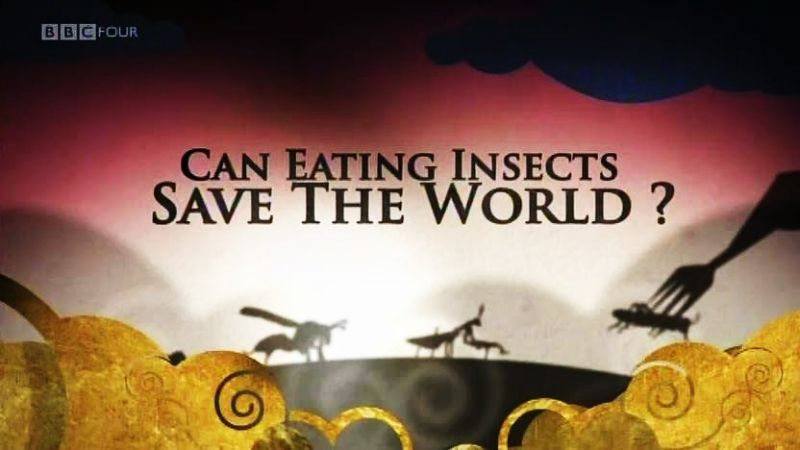 Image: Can-Eating-Insects-Save-the-World-Cover.jpg