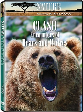 Image: Clash-Encounters-of-Bears-and-Wolves-Cover.jpg