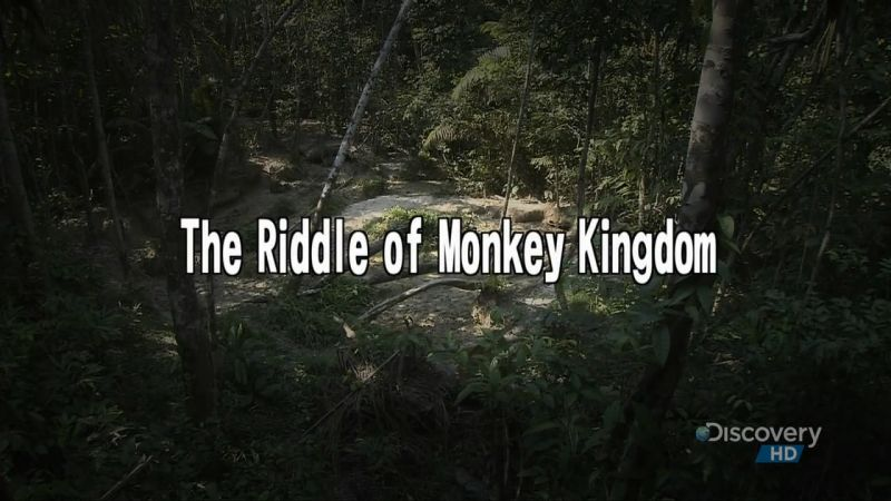 Image: The-Riddle-of-Monkey-Kingdom-Cover.jpg