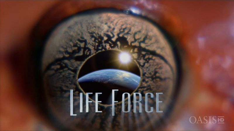 Image: Life-Force-Cover.jpg