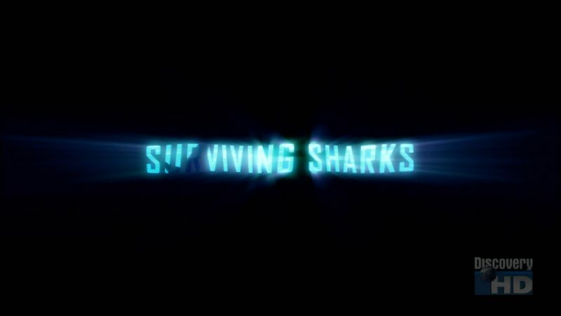 Image: Surviving-Sharks-Cover.jpg