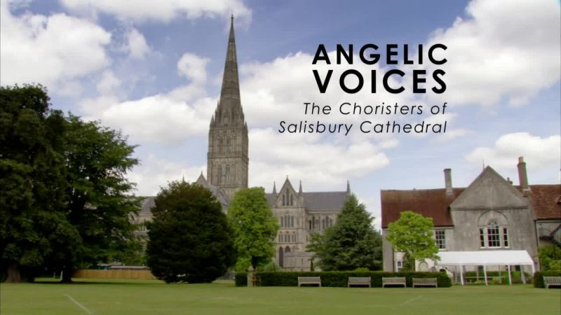 Image: Angelic-Voices-The-Choristers-of-Salisbury-Cathedral-Cover.jpg