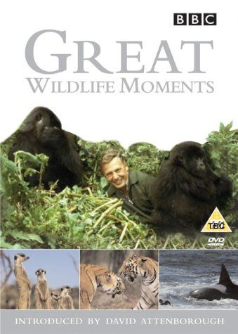 Image: Great-Wildlif-Moments-Cover.jpg