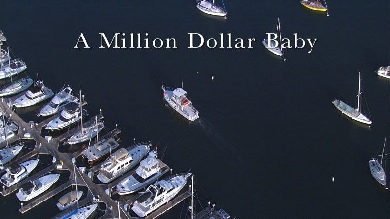 Image: Sea-Otters-A-Million-Dollar-Baby-BBC-1080p-Cover.jpg