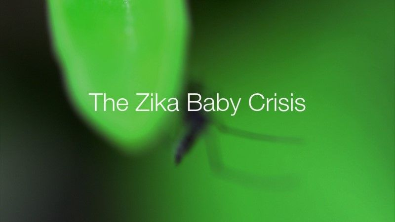 Image: The-Zika-Baby-Crisis-Cover.jpg