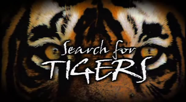 Image:Search-for-Tigers-Cover.jpg