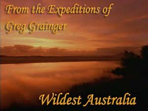 Image: Wildest-Australia-Cover.jpg