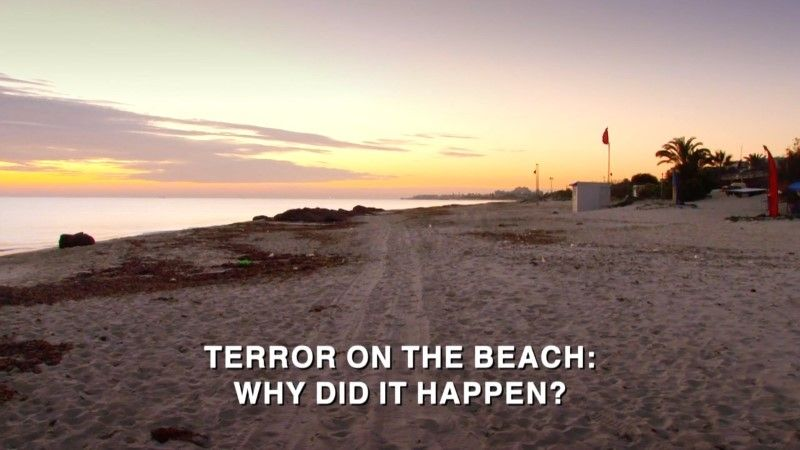 Image: Terror-on-the-Beach-Why-Did-It-Happen-Cover.jpg