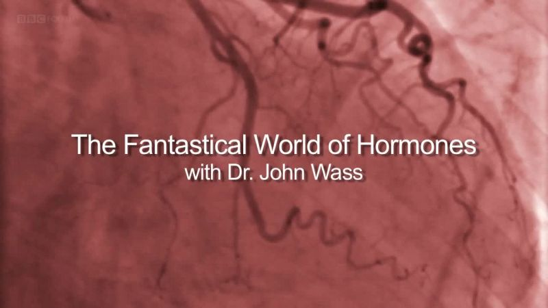 Image: The-Fantastical-World-of-Hormones-Cover.jpg