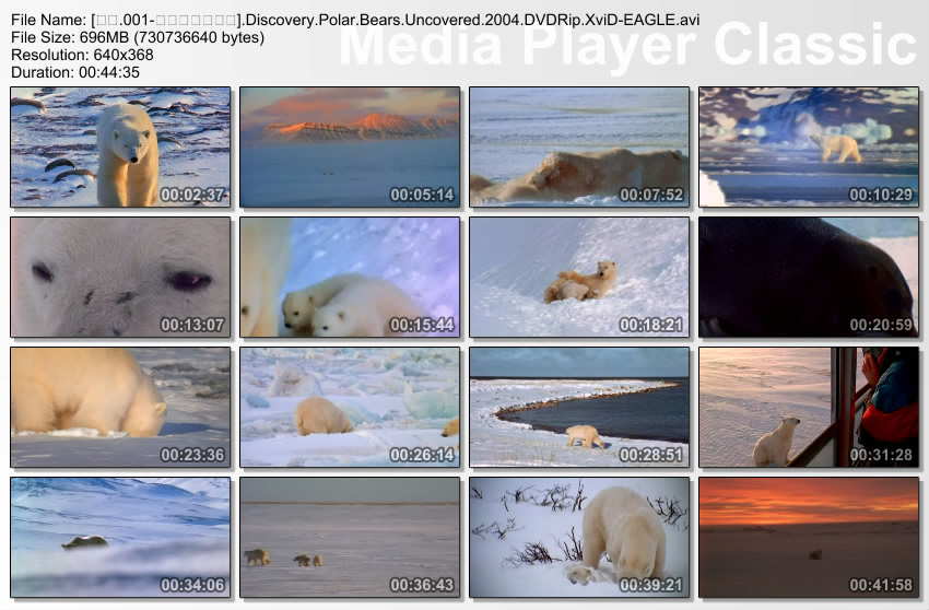 Image: Polar-Bears-Uncovered-Screen0.jpg