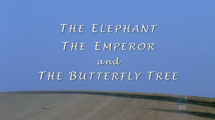 Image: The-Elephant-Emperor-and-Butterfly-Tree-Cover.jpg