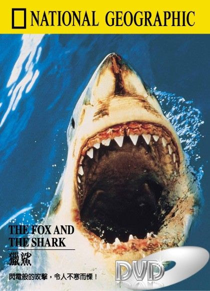 Image: The-Fox-and-the-Sharks-Cover.jpg