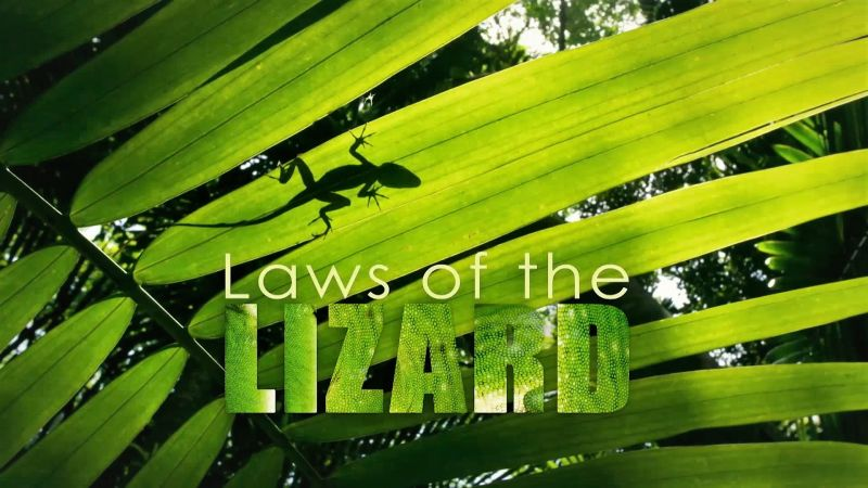 Image: Laws-of-the-Lizard-Cover.jpg