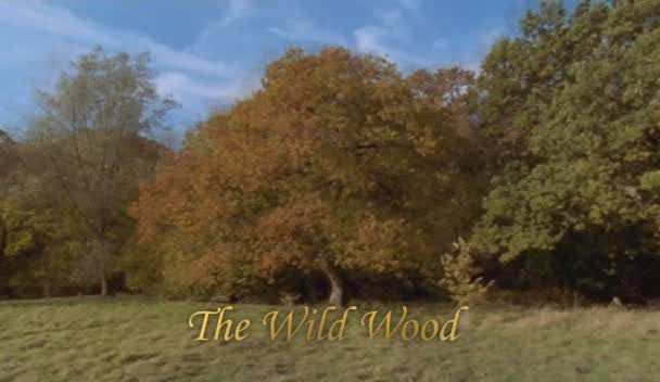 Image: The-Wild-Wood-Cover.jpg