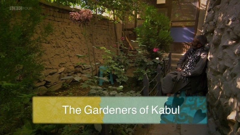 Image: The-Gardeners-of-Kabul-Cover.jpg