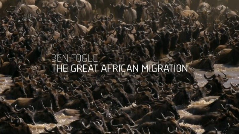 Image: The-Great-African-Migration-Cover.jpg