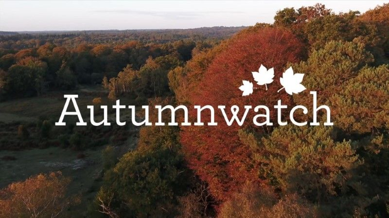 Image: Autumnwatch-2020-Cover.jpg