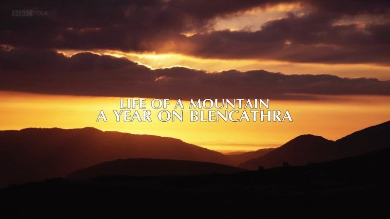 Image: Life-of-a-Mountain-A-Year-on-Blencathra-BBC-Cover.jpg