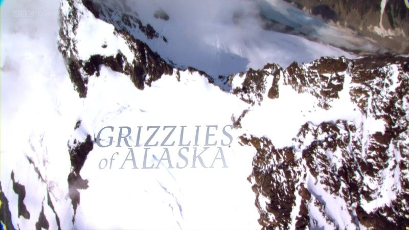 Image: Grizzlies-of-Alaska-BBC-1080p-Cover.jpg