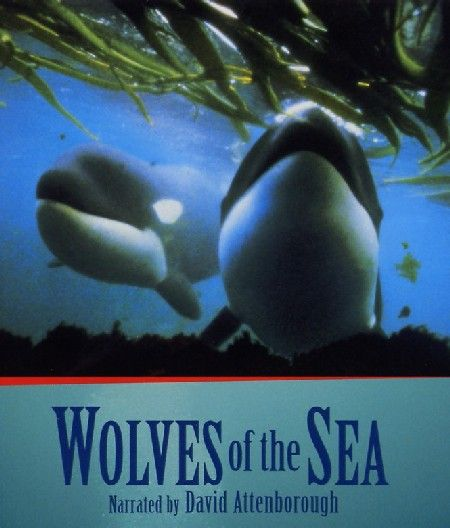 Image: Wolves-of-the-Sea-Cover.jpg