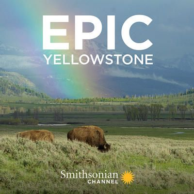 Image: Epic-Yellowstone-Cover.jpg