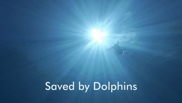 Image: Saved-by-Dolphins-Cover.jpg