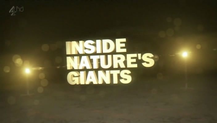 Image: Inside-Natures-Giants-Series-2-Cover.jpg
