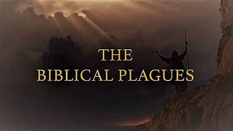 Image: The-Biblical-Plagues-Series-1-Cover.jpg