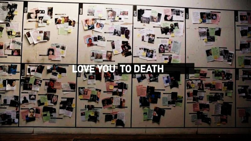 Image: Love-You-to-Death-A-Year-of-Domestic-Violence-Cover.jpg